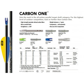 Tube CARBON ONE de EASTON