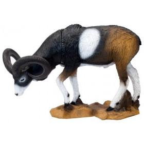 Mouflon broutant