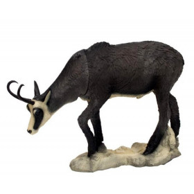 Chamois hiver broutant