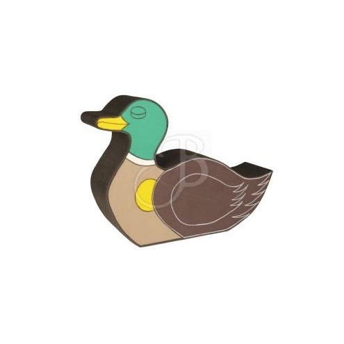 Canard en 2D de BOOSTER